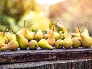 pears-3BTY5W9_1280x960